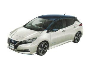 Nissan Leaf e+G 2020 г.