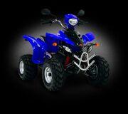 квадроцикл JAKYDZA WOOD RACER 150